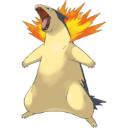 Ethan's Typhlosion