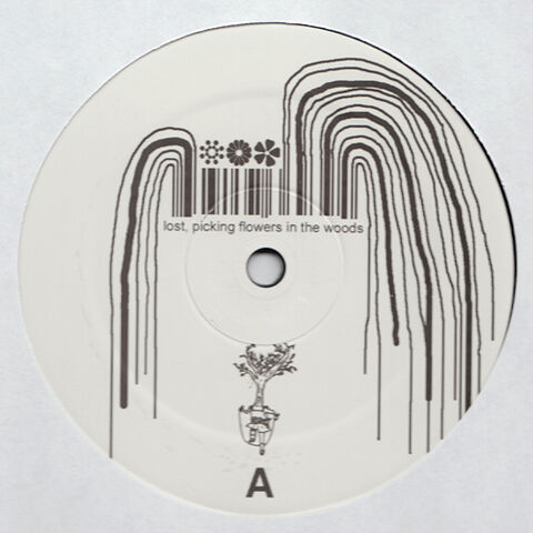 File:Bmsr lpfitw vinyl.jpg