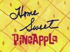 Home Sweet Pineapple.jpg