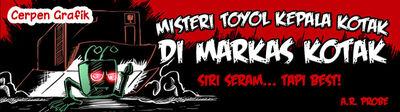 Toyol Mystery