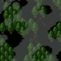 Lament woods