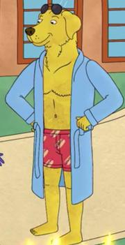 Mr. Peanutbutter Underwear