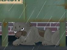 Bolt the superdog shocking chp 1 by bluewolf222-d5fam6k
