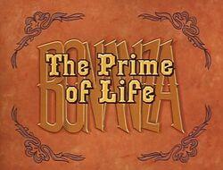 PrimeOfLife12