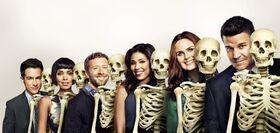 Bones11