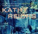 206 Bones (Novel)