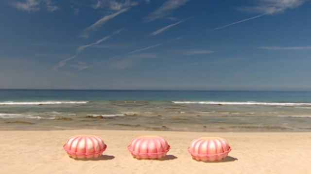 File:002 Pearly Shells.png