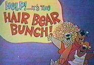 Hairbearbunchlogo