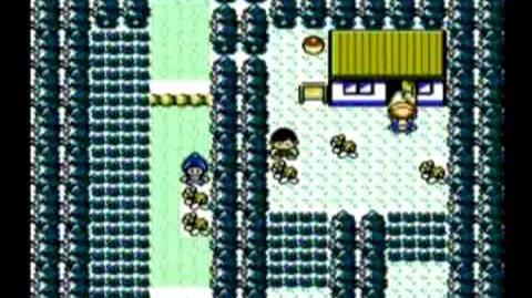 Pokémon Soulsilver and Heartgold NES Chinese Pirate Ports