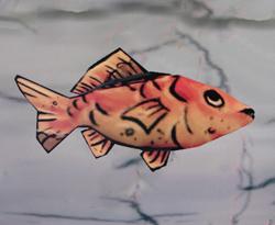 C'fish