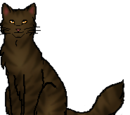 List of ShadowClan Members That Are Allowed on Highrock