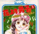 Hana Yori Dango: Romantic Story