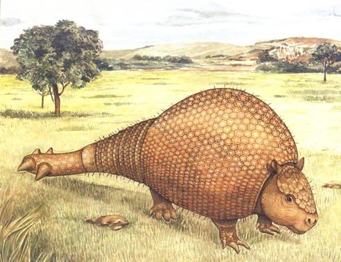 Arquivo:Gliptodonte.jpg