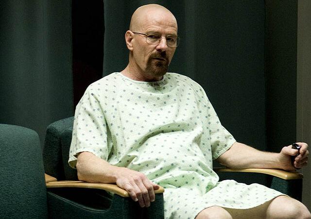 File:Episode-8-Walt.jpg