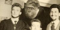 Alfred the Gorilla