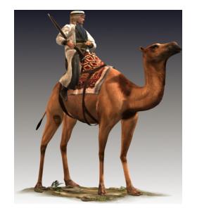 Etw i east desert nomad camelry