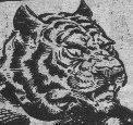 Tiger commander