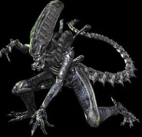 File:Xenomorph poise.jpg