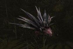 Ground urchin