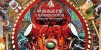 Transmutation (Mutatis Mutandis) (album)
