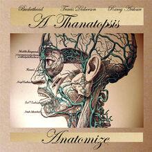 Anatomize