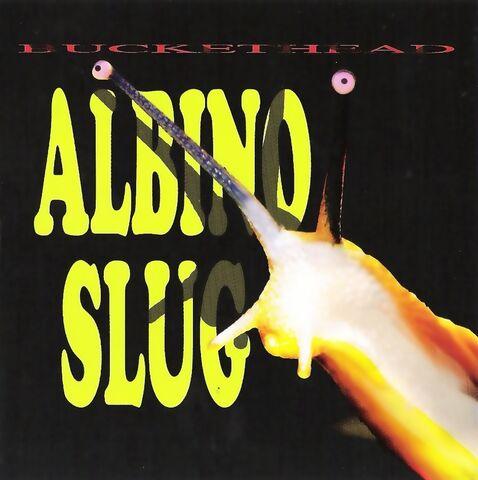 File:AlbinoSlug.jpg