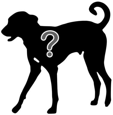 File:Dog silhouette.jpg