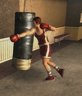 Bryce Montrose Boxing