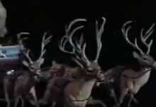 Cute Reindeers from the Christmas special