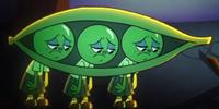 Russell's Siblings