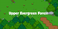 Upper Evergreen Forest