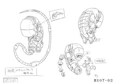 File:Homunculus embryo.jpg