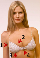 Million-dollar-bra