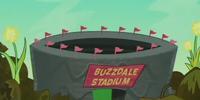 Buzzdale Stadium
