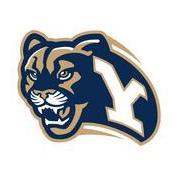 Cougar Y