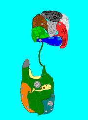 Mango-Nui Gingies-Nui