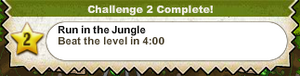 Run in the Jungle