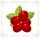 FreshCranberries