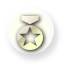 File:Medal icon.png