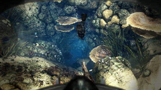 File:Into the Deep Beginning CoDG.png