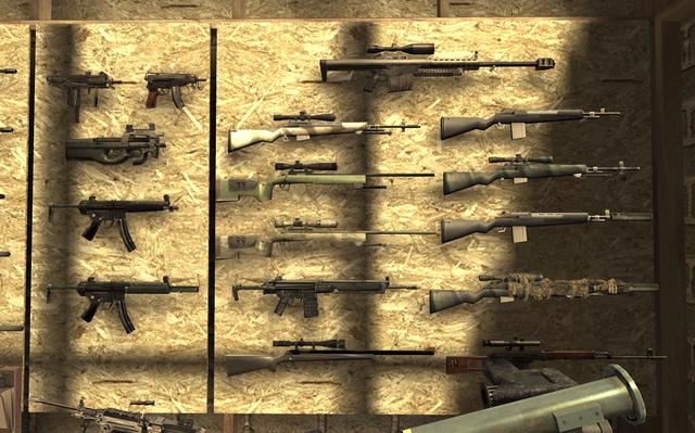 File:Gun Wall2 F.N.G. COD4.png