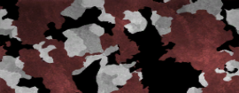 Bloodshot Camouflage menu icon BOII