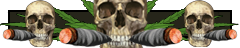 File:Iw5 cardtitle joint skulls.png