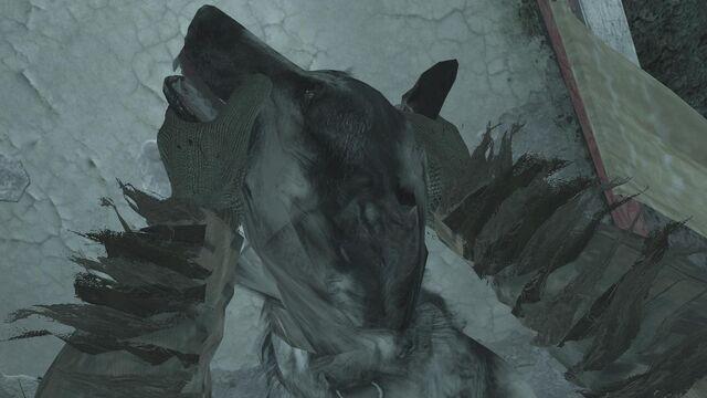 File:Breaking a Dog's neck.jpg