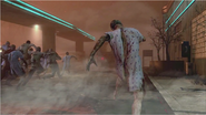 Zombie Horde BOII