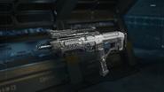 VMP Gunsmith model Rapid Fire BO3