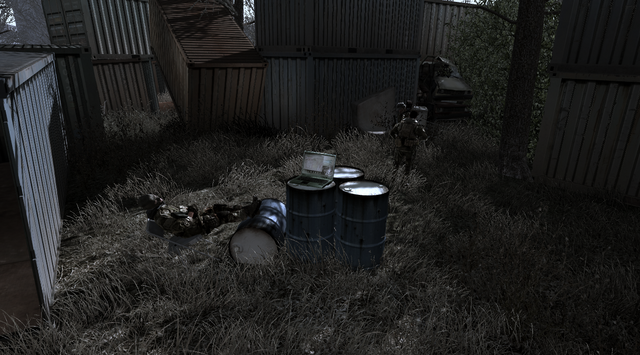 File:Intel No. 2 All Ghillied Up CoD4.png