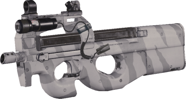 File:P90 Winter Tiger MWR.png