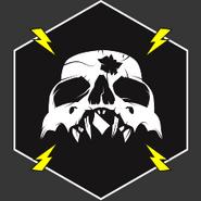 Head Trauma Emblem IW