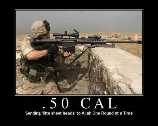 File:Personal Dolten 50calSniper.jpeg